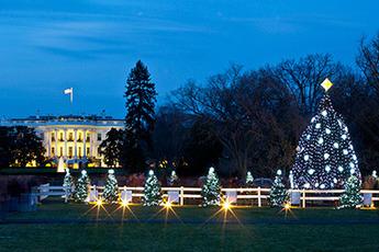 2015 National Christmas Tree Lighting Dec 3 2015 Washington Dc