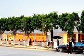 Fig & Olive - Lounge | Mediterranean Restaurant in LA