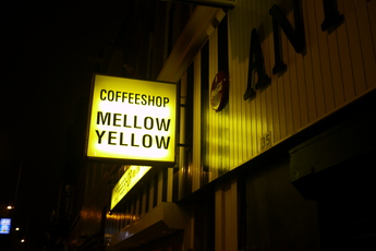 Mellow Yellow - Coffeeshop in Amsterdam.