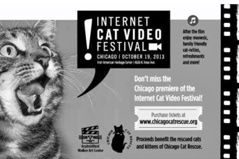Chicago Internet Cat Video Film Festival 2013 - Film Festival | Screening | Benefit / Charity Event in Chicago.
