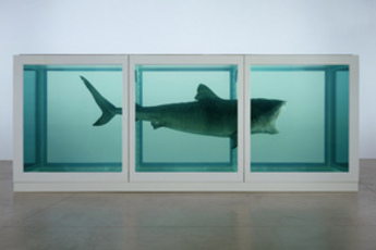 Damien Hirst Exhibit - Art Exhibit in London.