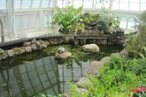 Conservatory of Flowers - Park | Landmark | Museum | Event Space | Tour in SF