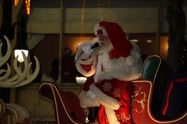 Hollywood-christmas-parade_s268x178