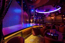 Show Palace (18 and up) - Gentlemen's Club | Restaurant | Strip Club | Hookah Bar in New York.