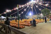 Halloween Harvest Festival - Outdoor Event | Festival | Holiday Event in Los Angeles.
