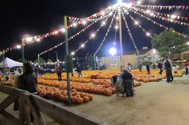 The-halloween-harvest-festival_s268x178