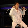 Elvis Fest - Concert | Food &amp; Drink Event | Music Festival | Special Event in Chicago