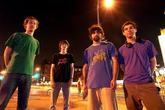 Animal-collective_s165x110