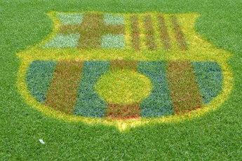 Camp Nou - Concert Venue   Stadium in Barcelona.