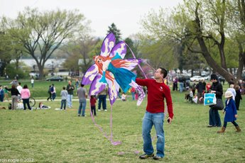 Blossom Kite Festival - Arts Festival in Washington, DC.