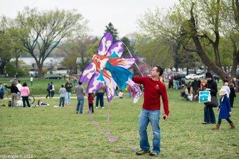 Blossom Kite Festival - Arts Festival in Washington, DC.