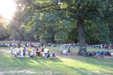 Prospect Park - Live Music Venue | Outdoor Activity | Park in NYC