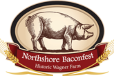 Northshore Baconfest - Food Festival | Festival in Chicago.