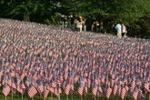 Memorial Day Flag Garden on Boston Common - Holiday Event in Boston.