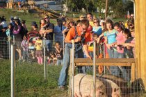 Fall Harvest Festival at Summers Farm - Festival | Outdoor Event in Washington, DC.