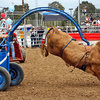 Extreme Rodeo - Special Event in Los Angeles.