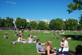 Green Park - Outdoor Activity | Park in London.