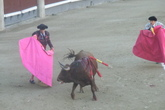 Bullfights-at-las-ventas_s165x110