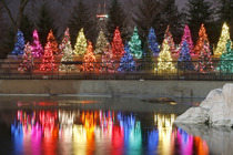 ZooLights - Festival | Holiday Event | Special Event in Chicago.