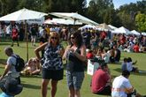 Almaden Valley Art & Wine Festival - Arts Festival | Wine Festival in San Francisco.