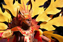 Notting Hill Carnival 2014 - Food & Drink Event | Music Festival | Street Fair in London