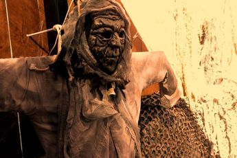 Field of Screams: The Haunted Stadium - Special Event | Holiday Event in Los Angeles.
