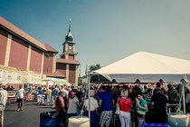 Taste of Polonia 2014 - Cultural Festival in Chicago
