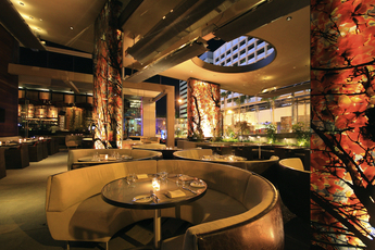 Boa Steakhouse West Hollywood Los Angeles Party Earth