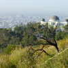 Griffith Park - Concert Venue | Landmark | Outdoor Activity | Park in Los Angeles.