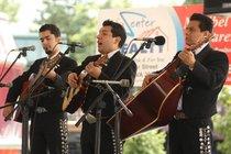 Manassas Latino Festival 2014 - Cultural Festival | Music Festival in Washington, DC