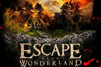 Escape From Wonderland - Holiday Event | Music Festival in Los Angeles.