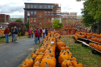 Keene Pumpkin Festival - Festival | Holiday Event in Boston.
