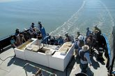 Earth Day on the Bay - Community Festival | Festival | Arts Festival | Outdoor Event in San Francisco.