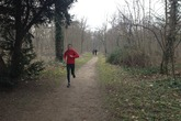 Bois de Boulogne - Park in Paris