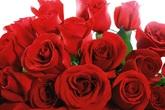 Valentines-day_s165x110