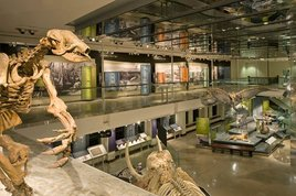 First-fridays-natural-history-museum-concert_s268x178