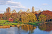 Central Park is one of the most scenic places to get a tan in the entire world.