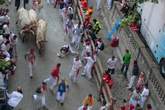 Running-of-the-bulls_s165x110