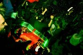 Ex-t-berlin-birthday-party_s165x110