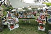Festival-del-verde-e-del-paesaggio_s165x110