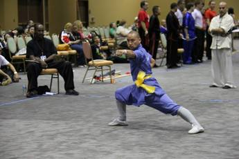 Windy City Chinese Martial Arts Championship - Ultimate Fighting / Mixed Martial Arts | Sports in Chicago.