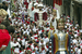  www.sanfermin.pamplona.es
