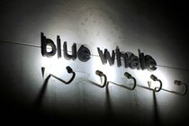 Blue Whale - Music Venue | Bar | Jazz Bar in Los Angeles.