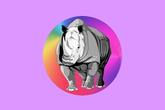 Theatre Rhinoceros - Theater in SF