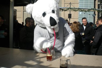 Chicago Polar Beer Festival - Beer Festival | Food & Drink Event in Chicago.