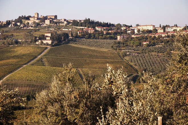 Photo of Chianti Region