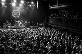 Paard Van Troje (The Hague)  - Concert Venue in Amsterdam