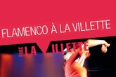Flamenco-a-la-villette_s165x110