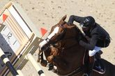 Cannes Global Champions Tour - Equestrian | Sports in French Riviera.