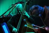 Jazzfest Berlin - Concert | Music Festival in Berlin.